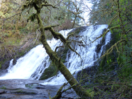 Green_peak_falls_trail_15_5