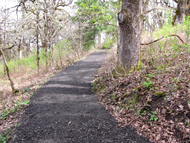 Bh_oak_trail_surface_a