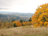 Chip_ross_autumn_colors_c